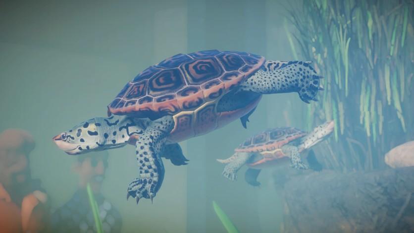 Screenshot 14 - Planet Zoo: Aquatic Pack