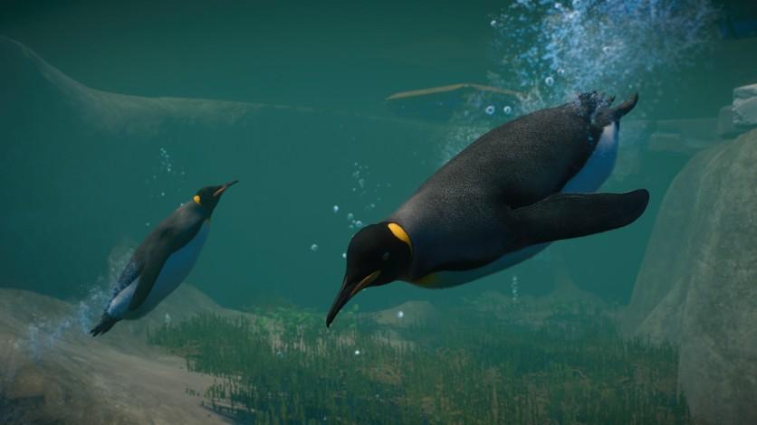 Screenshot 3 - Planet Zoo: Aquatic Pack