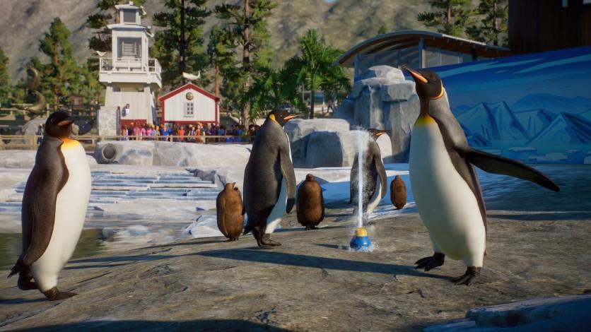 Screenshot 4 - Planet Zoo: Aquatic Pack
