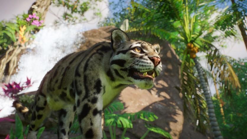 Screenshot 3 - Planet Zoo: Southeast Asia Animal Pack