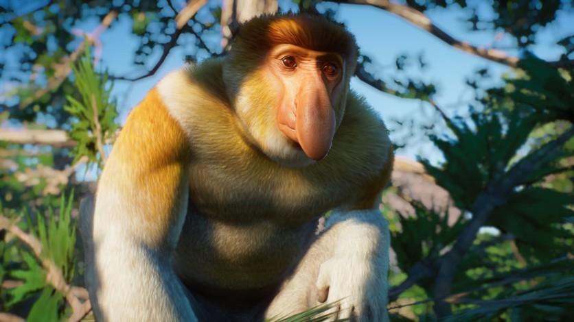 Screenshot 5 - Planet Zoo: Southeast Asia Animal Pack