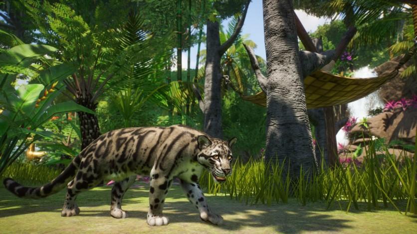 Screenshot 2 - Planet Zoo: Southeast Asia Animal Pack