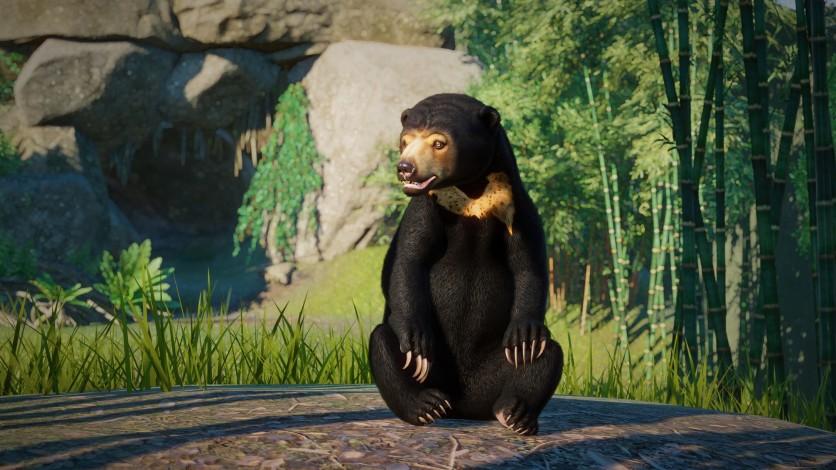 Screenshot 4 - Planet Zoo: Southeast Asia Animal Pack