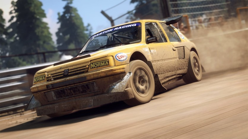 Screenshot 11 - DiRT Rally 2.0 - Game Of The Year Edition