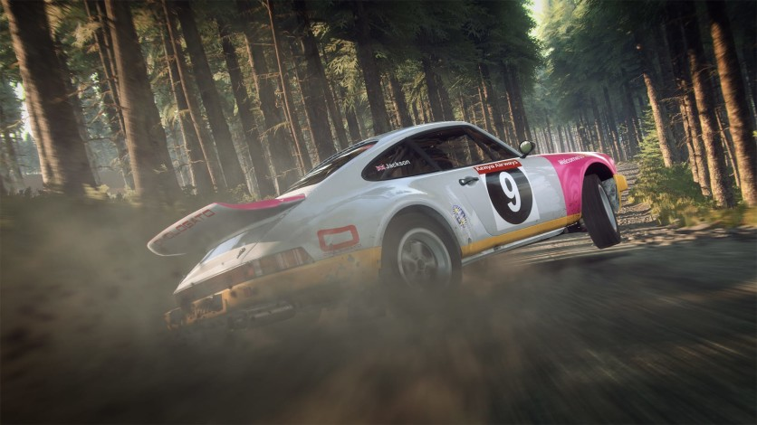 Screenshot 8 - DiRT Rally 2.0 - Game Of The Year Edition