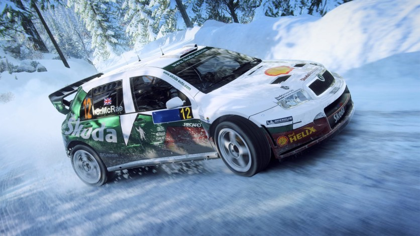 Screenshot 3 - DiRT Rally 2.0 - Game Of The Year Edition