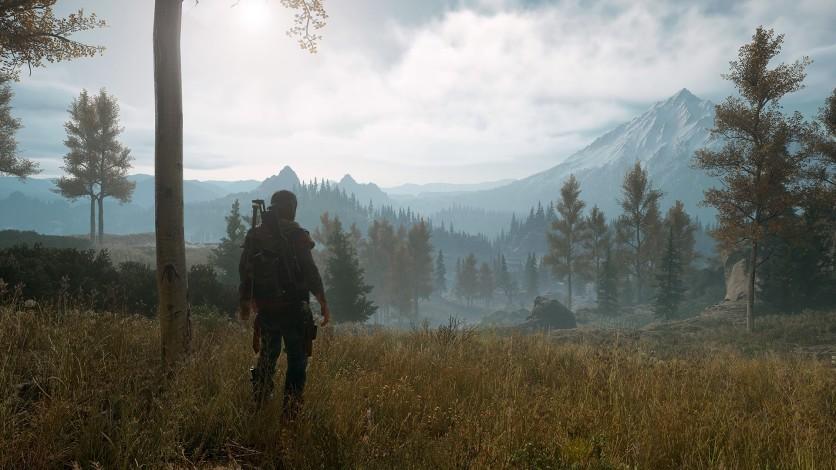 Screenshot 5 - Days Gone